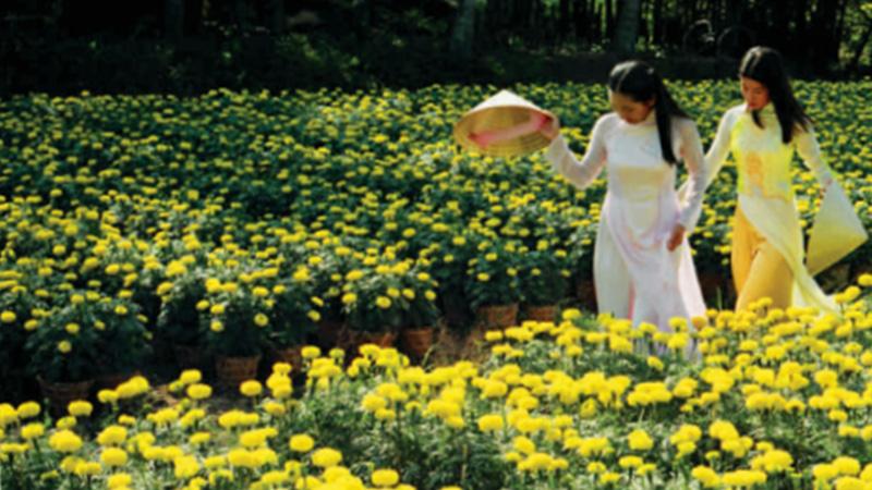 Làng nghề Trồng hoa kiểng Long Đức